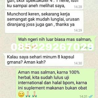 Hub: 0852 2926 7029 Jual Stamina Pria Dewasa di Kapuas, Strongman Kapuas, Strongmen Kapuas