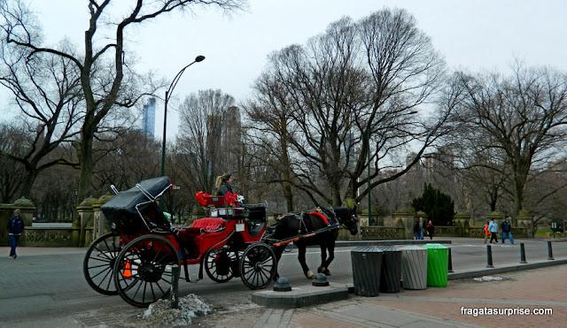 Passeio de charrete no Central Park, Nova York