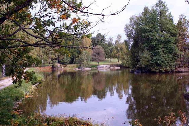 Teich in der Blockheide © Copyright Monika Fuchs, TravelWorldOnline