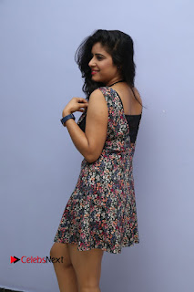 Actress Manisha Tagore Pictures at Hyderabad Love Story Platinum Disc Function  0096