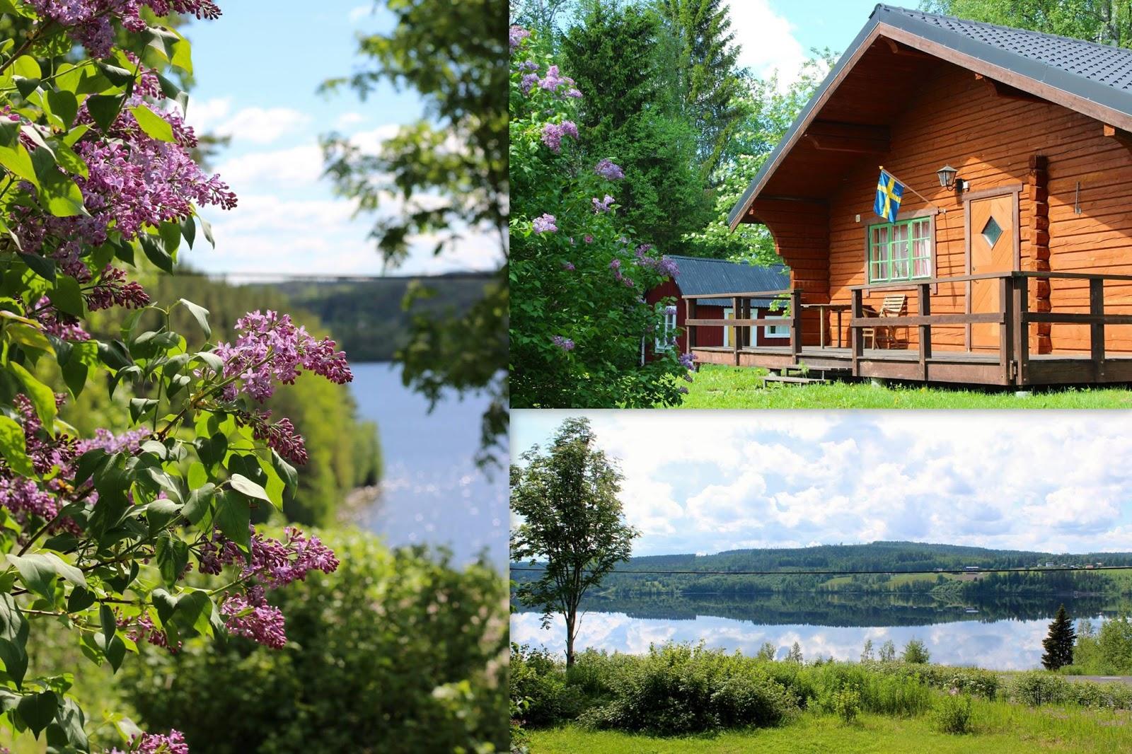 stuga uthyres i Ångermanland Sollefteå nära Höga kusten stugor holiday cabin