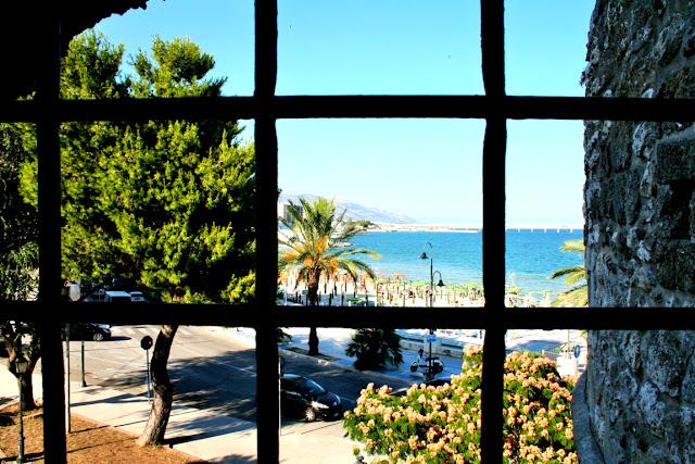 alberi, mare, cielo, paesaggio, spiaggia