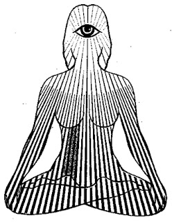 littlebigyoga yoga postures for each chakra