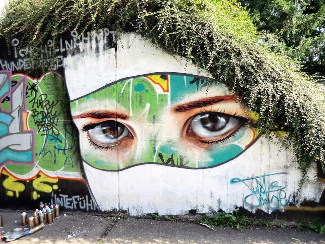 Resultado de imagen para naturaleza arte calle