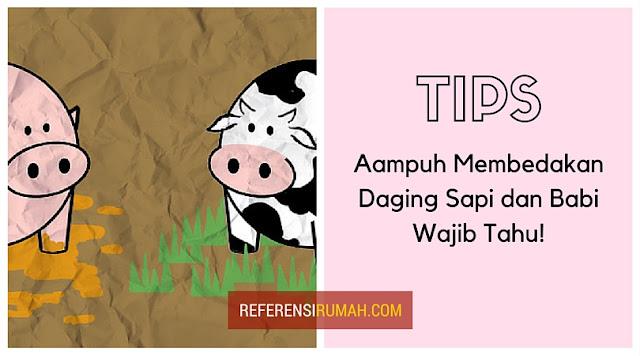 Tips Ampuh Membedakan Daging Sapi Segar Dengan Daging Babi, Wajib Tahu!