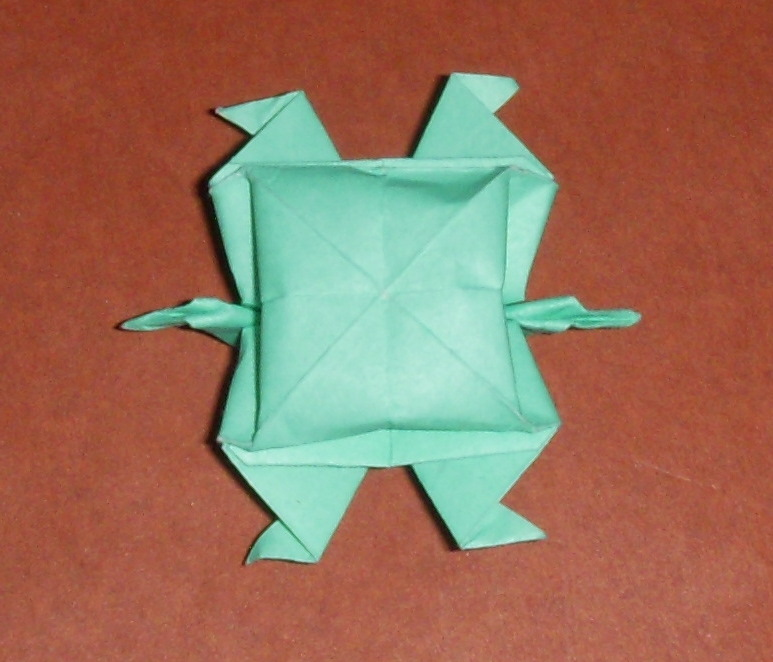 Easy Origami Turtle Instructions Image Gallery - Photonesta ... | 662x773