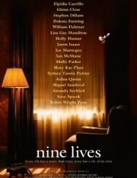 Nine Lives   Bmovies