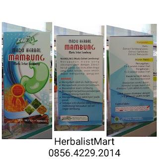 JUAL MADU MAMBUNG | HUB. FARIKHIN 0856.4229.2014 | MADU HERBAL SEHAT LAMBUNG