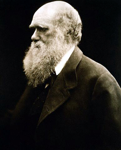 Charles Darwin Albumen print, 11.25 x 9.5 inches, 1868. In Photos: Remembering Celebrity Photographer Julia Margaret Cameron, history of photography, vintage photos, photography news, photography