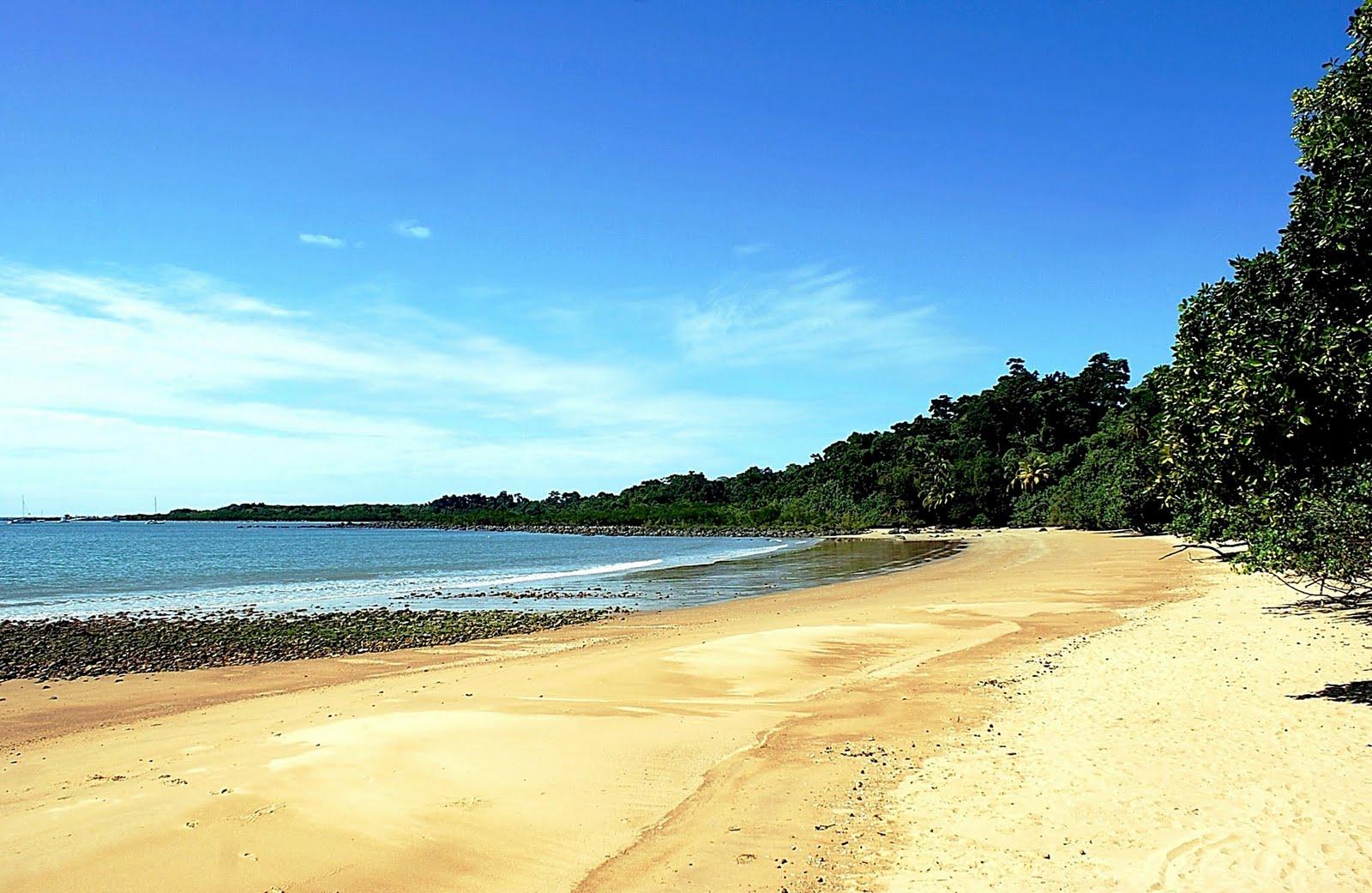 Dunk Island Holidays: Chris Kiely