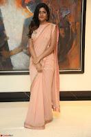 Eesha Rebba in beautiful peach saree at Darshakudu pre release ~  Exclusive Celebrities Galleries 060.JPG