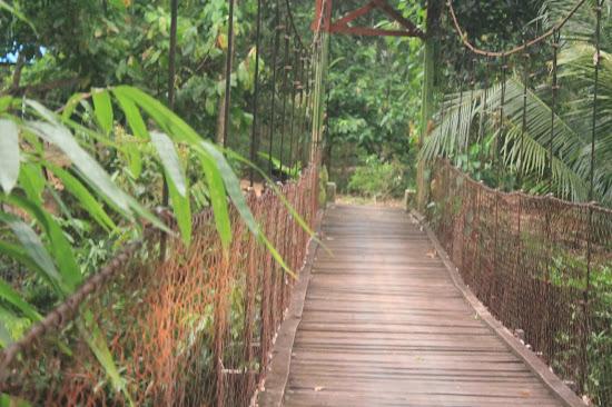 Jembatan Gantung - Catatan Nizwar ID
