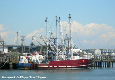 Cape May Harbor & Marina in New Jersey