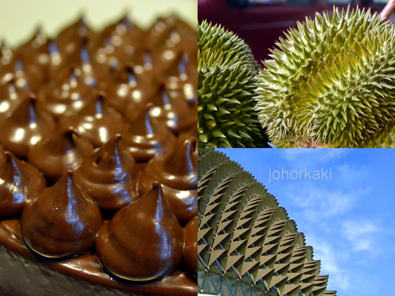 Chocolate Durian Cake