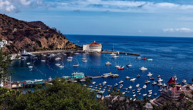 harbor and cliff from above at Santa Catalina Island