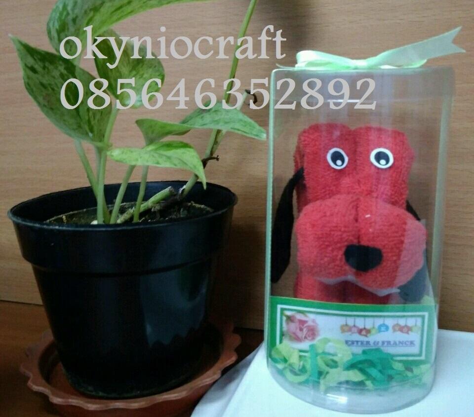 Handuk Karakter Anjing Okynio Souvenir Mika Bagus Ukuran 30 X Cm Kualitas Dan Lembut Warna Merah Biru Kuning Hijau Pink Coklat Diameter 8