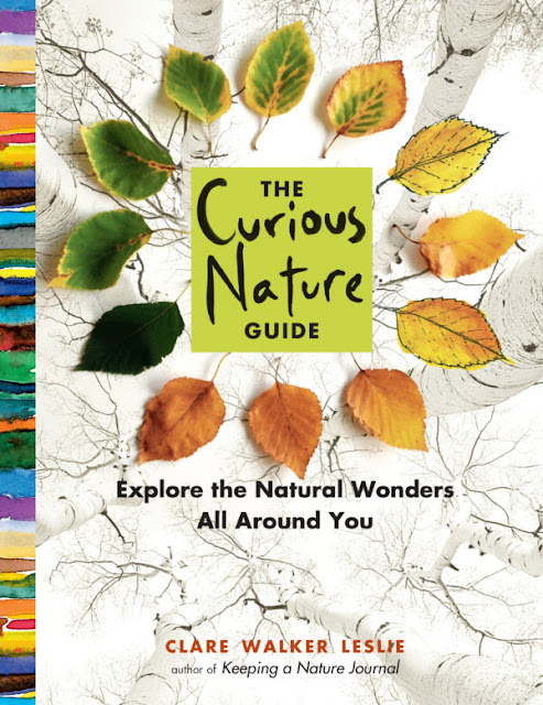 http://www.storey.com/books/the-curious-nature-guide/