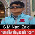 https://www.humaliwalayazadar.com/2018/05/syed-muhammad-naqi-zaidi-manqabat-2018.html