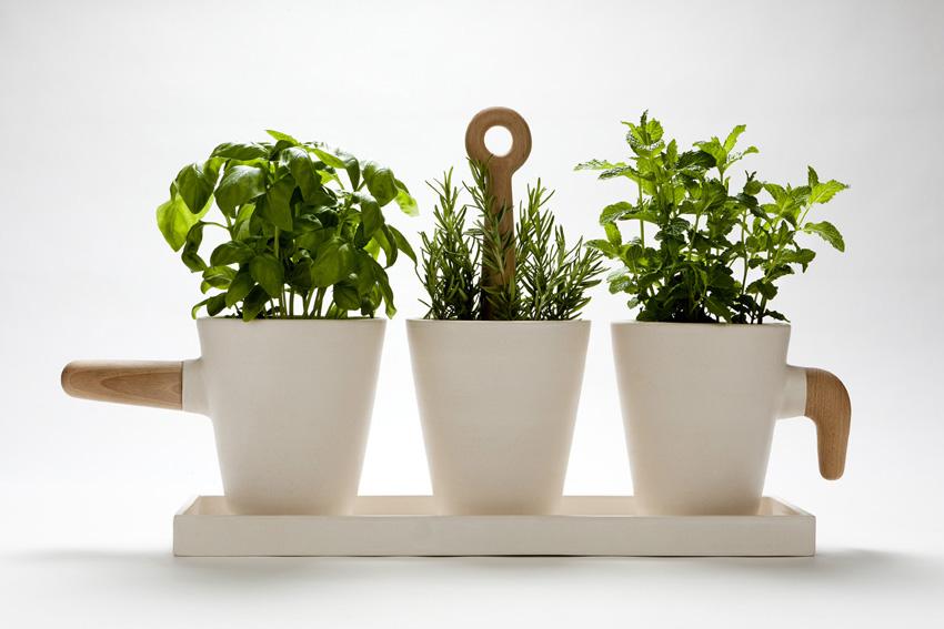 jocundist: kitchen herb pot