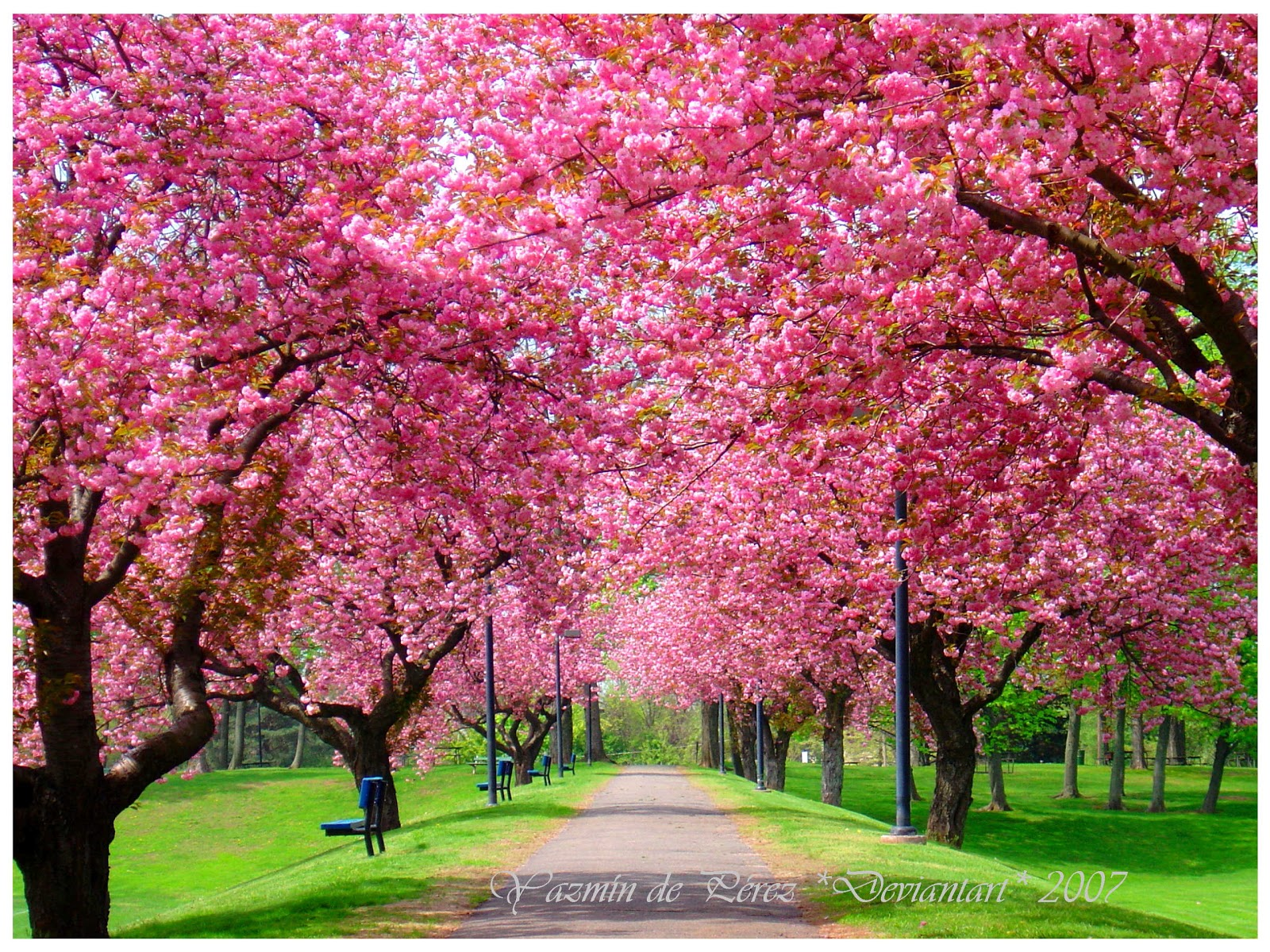 beautifully imperfect: Spring Break