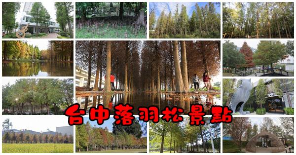 台中賞落羽松28個景點,找時間出門散散步吧,持續更新