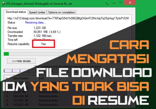 Cara Mengatasi File Download Pada IDM Tidak Bisa di Resume 20