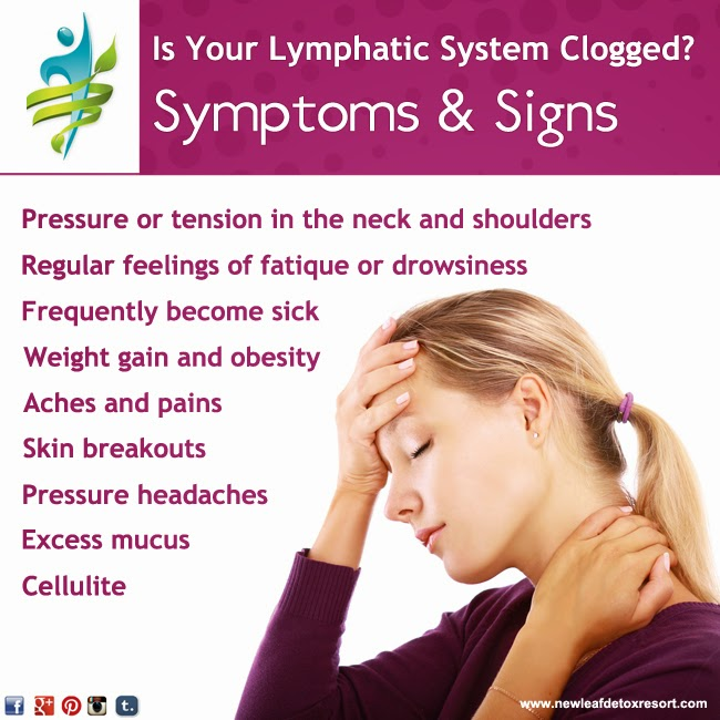 New Leaf Detox Resort Keeping Your Lymphatic System