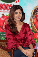 Bollywood Actress Shilpa Shetty Stills in Tight Jeans at Launch Of   0012.jpg