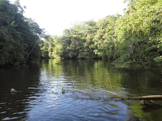 Guyane, carbet, armée de l'air, ccm