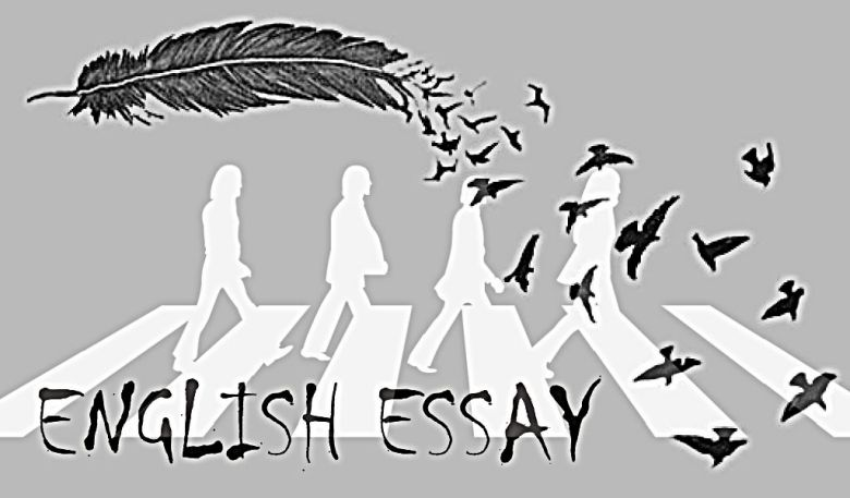 english essay my favourite food is tom yam fried rice english essay
