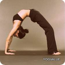 15 Basic Yoga Poses & Asanas for Beginners With Benefits of Yoga Poses