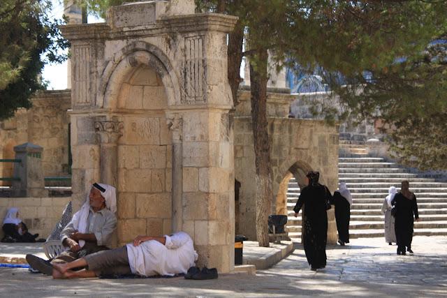 O MONTE DO TEMPLO, um paraíso no meio da cidade antiga de Jerusalém | Israel e Palestina