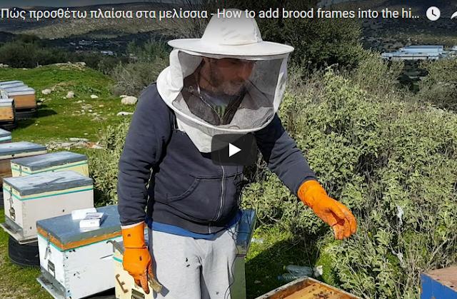 Μελισσοκομία Melefsis: Πώς προσθέτω πλαίσια στα μελίσσια μου