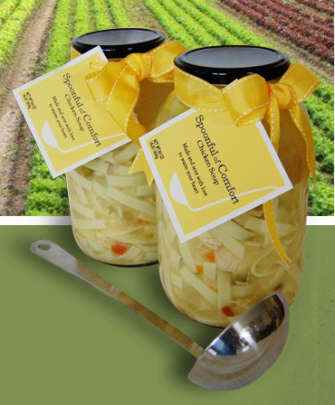 spoonful of comfort chicken soup