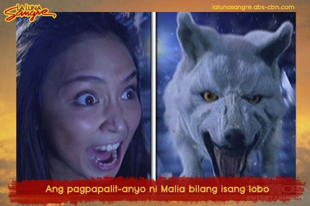 IN PHOTOS: Here Are The Highlights Of La Luna Sangre Week 25