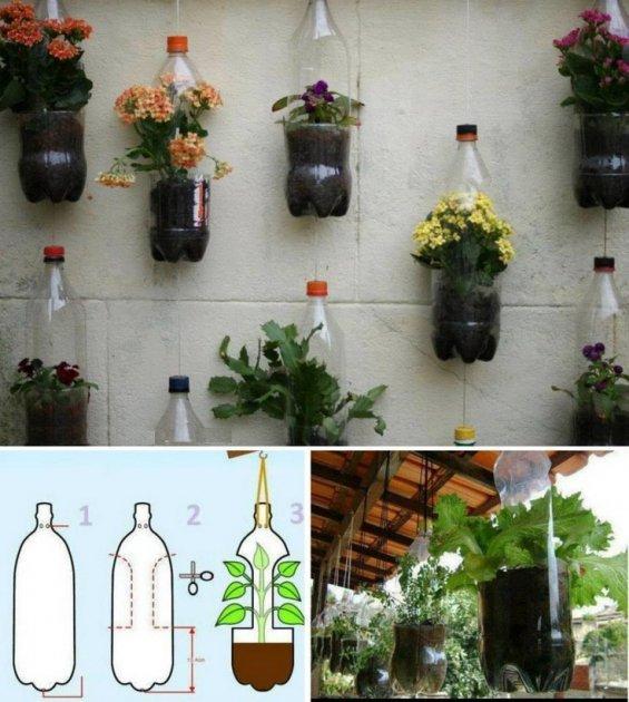 en este ejemplo se tomaron botellas pets de dos litros y se realizaron dos cortes para permitir que la planta pueda extenderse se rellen su interior con