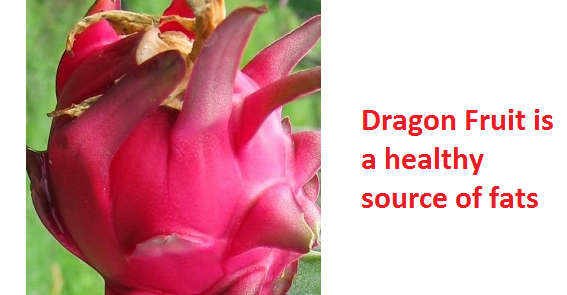 Dragon Fruit is a healthy source of fats