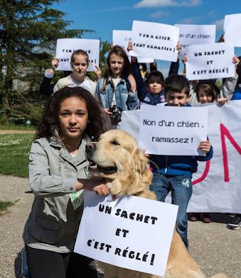 GRAND-QUEVILLY. La Ville a élaboré une campagne décalée pour partir en guerre contre les déjections canines.