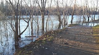 Sentier inondé, parc de la Visitation, rivière des Prairies, crue printanière