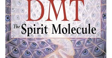 Dmt The Spirit Molecule Book Pdf