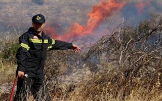 Υπό έλεγχο η φωτιά στην Αχλαδινή Ηλείας