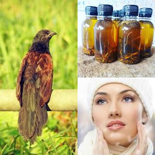 Kegunaan Khasiat Manfaat Minyak But But Untuk Kecantikan Wajah, Jerawat, Kulit Gatal