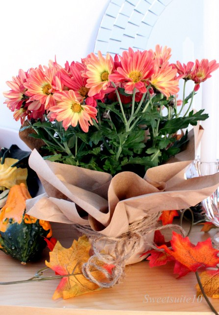 Fall decor - mums wrapped in brown paper