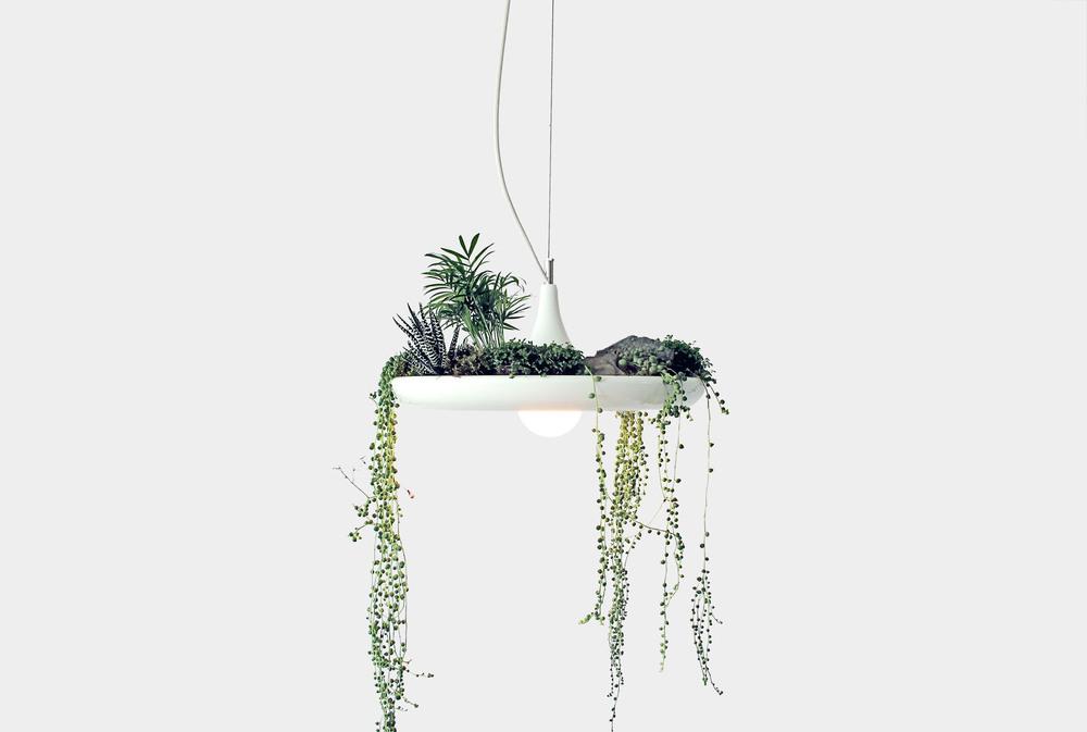 Lampa z ogrodem
