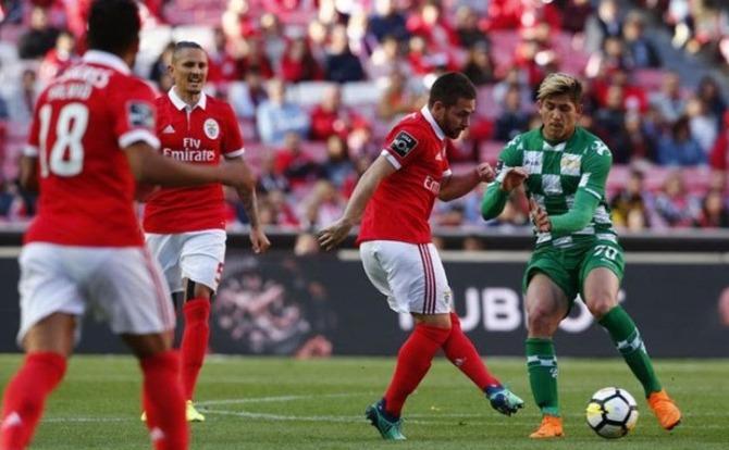 Benfica Futebol Zivkovic
