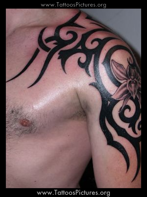 Tribal Tattoos For Men Shoulder And Arm | Great Tattoos