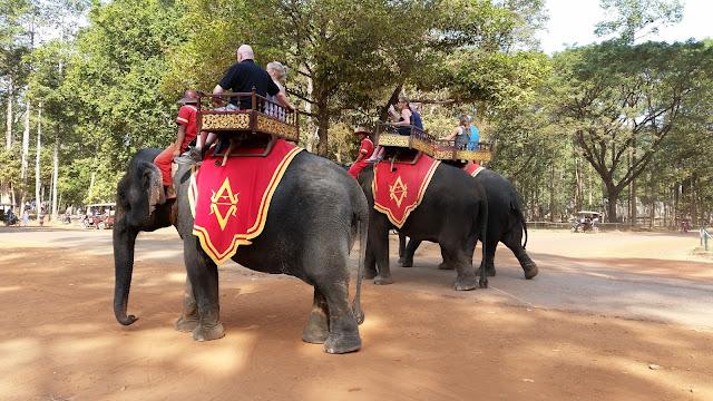 Auf den Elefanten in Kamodscha unterwegs