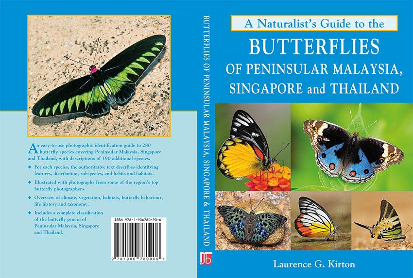 Singapore Math Worksheets