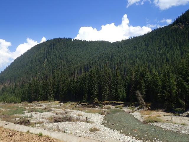 Dolina jednej z karpackich rzek