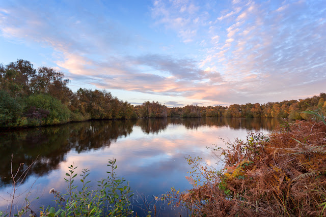 Clouds form at sunset at Holme Fen and are reflected in the water